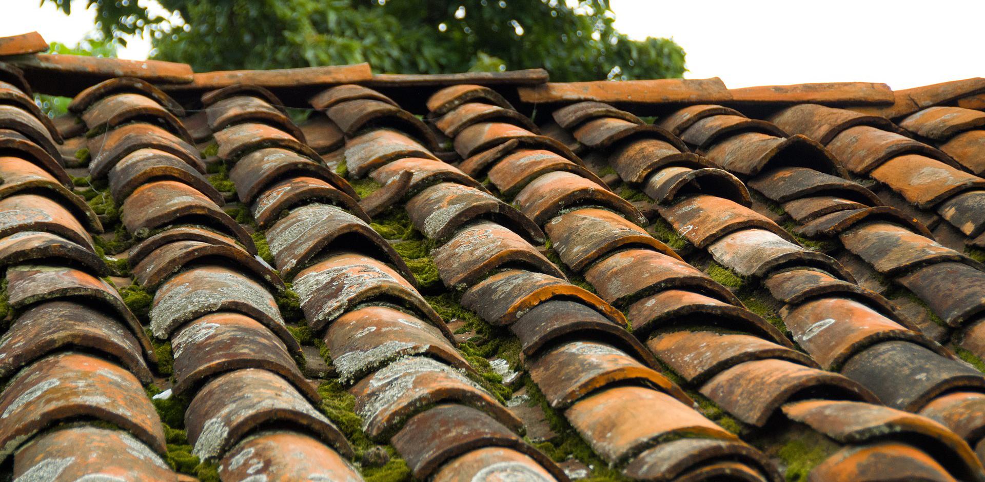 Regelmäßige Dachwartung hätte diesem Dach gut getan.