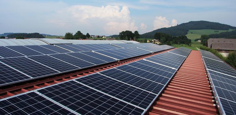 Wettbewerb statt Festpreis – die Novelle des Erneuerbare-Energien-Gesetzes